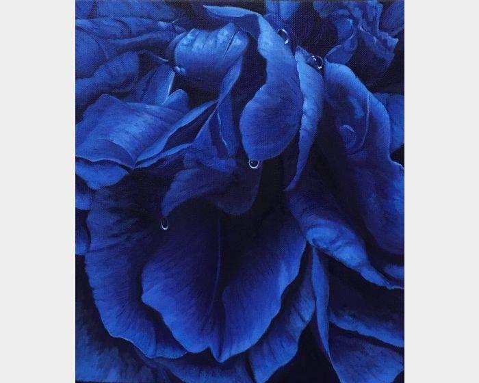 林美蕙-藍花序曲4