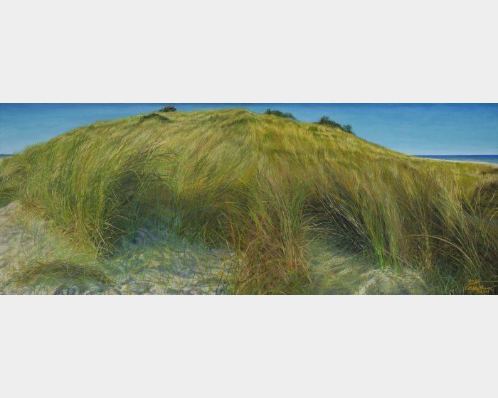 海‧沙灘‧草