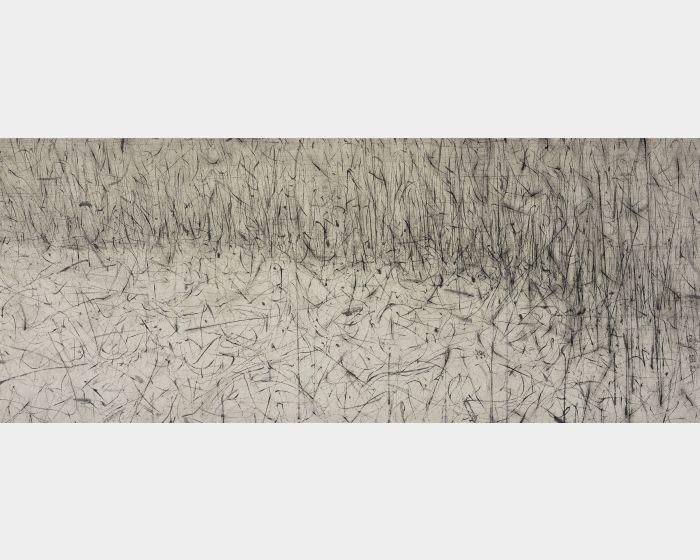 劉永濤 -野草-130607