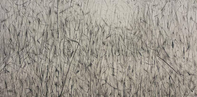 劉永濤 -野草-130705