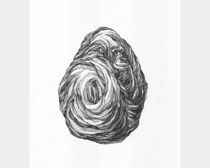 謝宗玲-畫石-似金剛化石