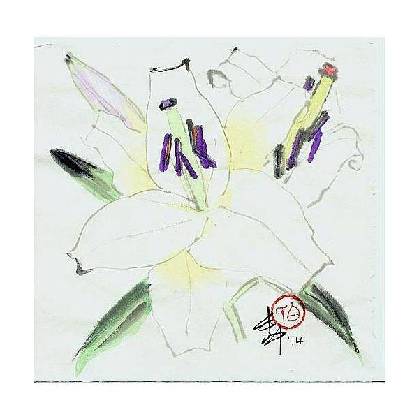 白丰中-花卉(二)