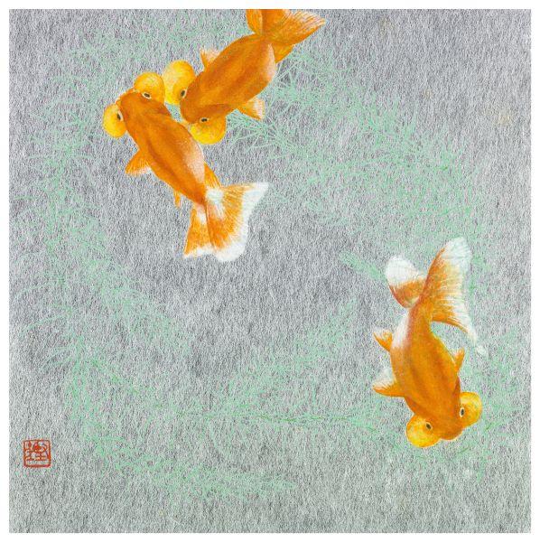 湯柏鏗-自圓