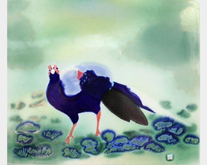 范振金-藍腹鷴 Emperor pheasant