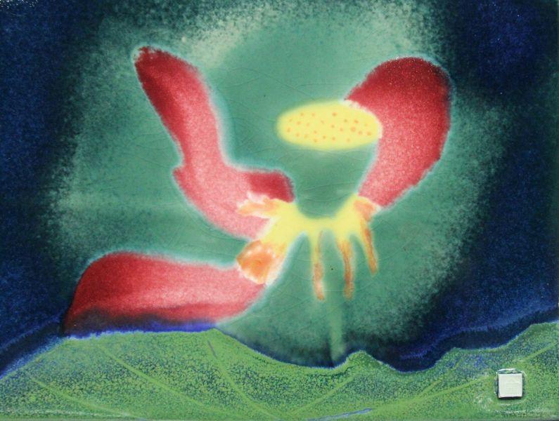 范振金-荷花-開花結果 Lotus