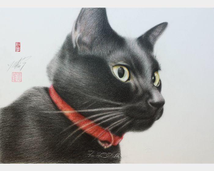 高橋行雄-歐喵 Black cat
