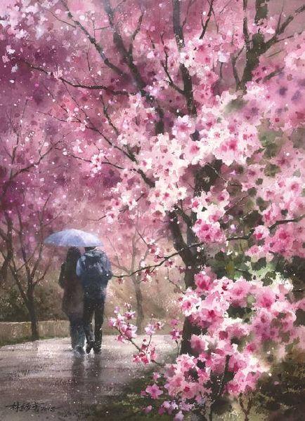 林經哲-櫻花雨紛飛