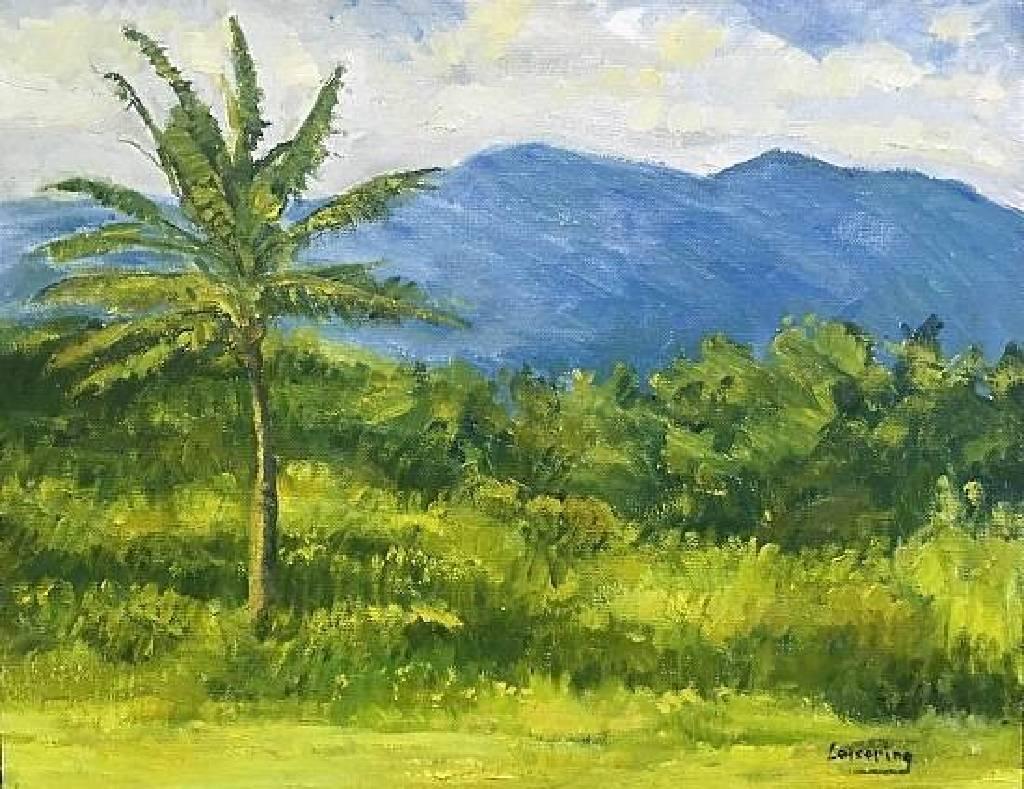 洪傑生 - 神采奕奕 Palm and Mountain