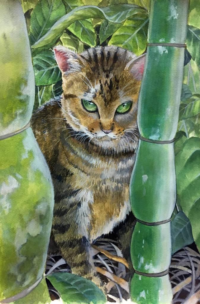 陳麗安 - 虎斑貓小咖