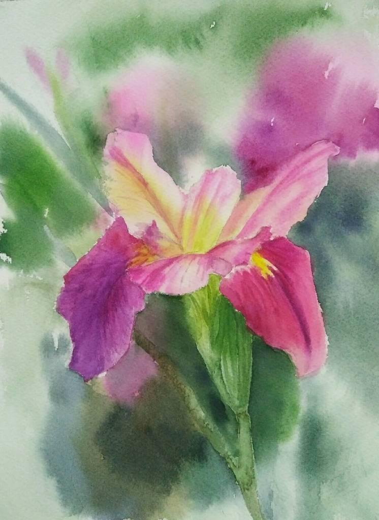 王素 - 鳶尾花