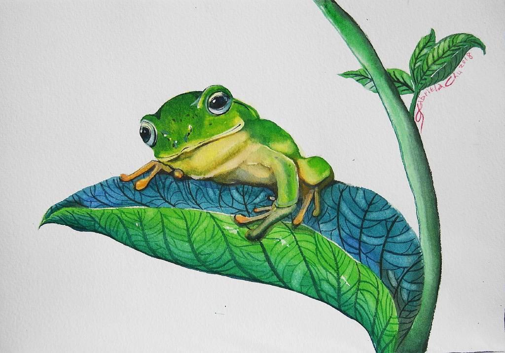 朱珮銀 - smile frog