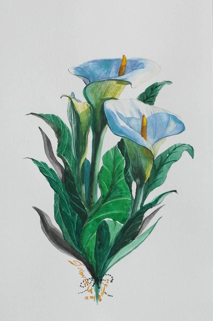朱珮銀 - white calla lily(海芋)