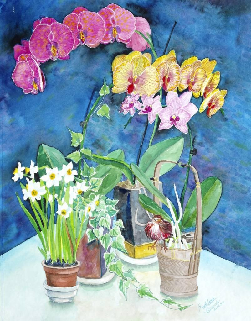 葛拉娜 - 花與瓶 Flowers in the pots