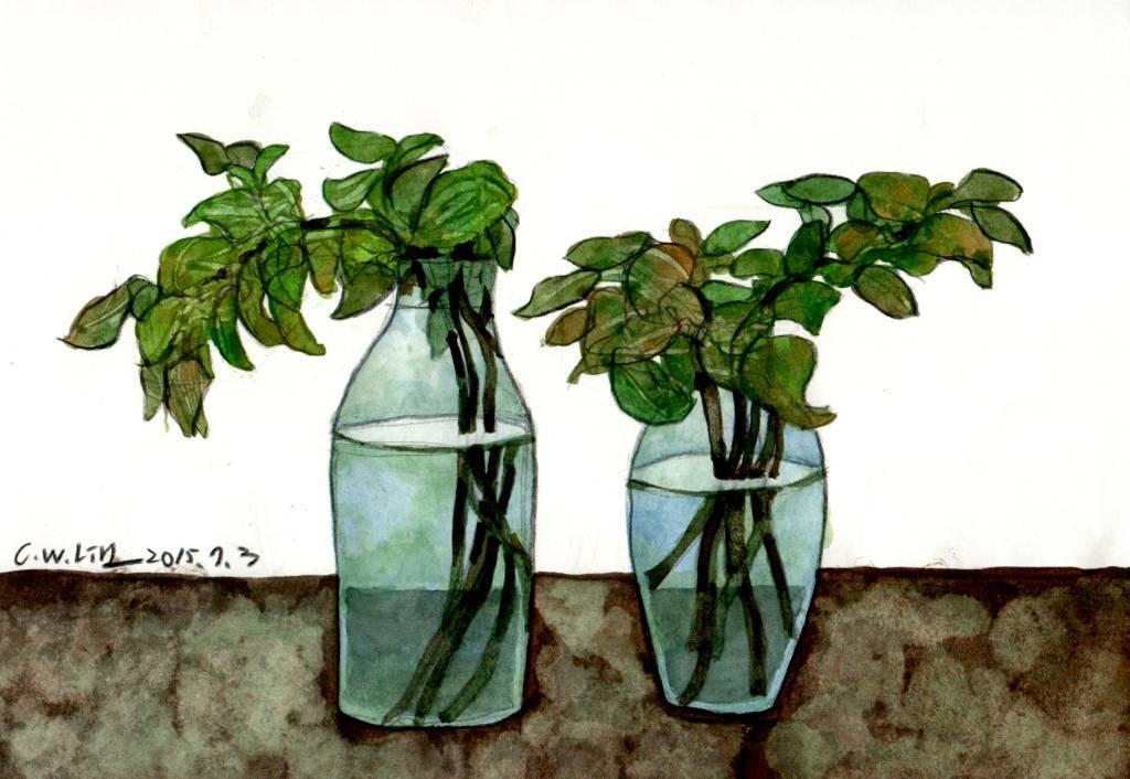 林致維 - 水瓶中的植物