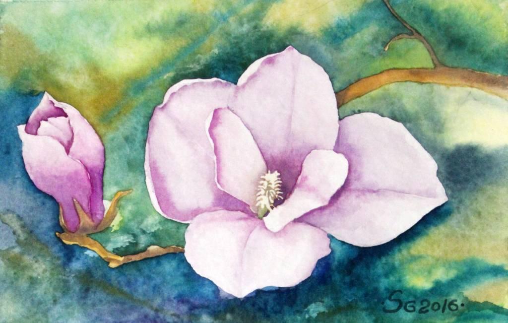 葛拉娜 - Magnolia