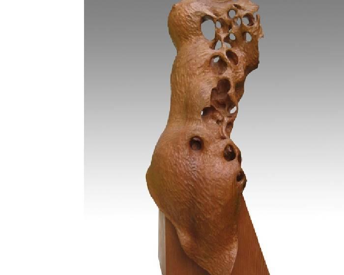 斑蝕皮相之下 - 張家駒的木雕作品