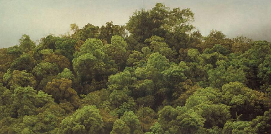 葉子奇,《山在花蓮.荖溪》。