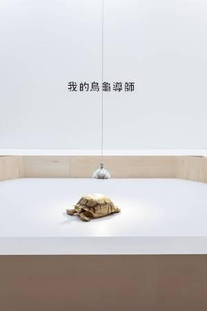 島袋道浩,《我的烏龜導師》。圖/北美館提供。