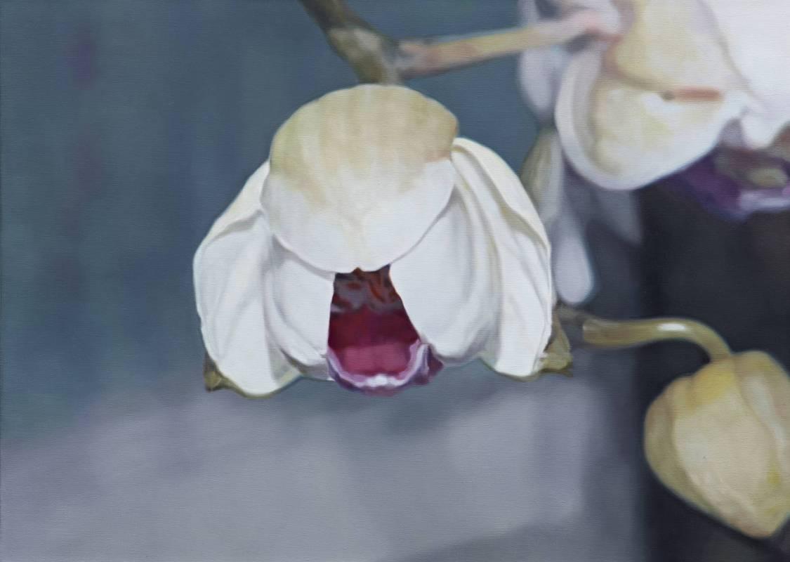 蘭花 Orchid 油彩‧畫布 Oil on canvas 80 x 112 cm 2014