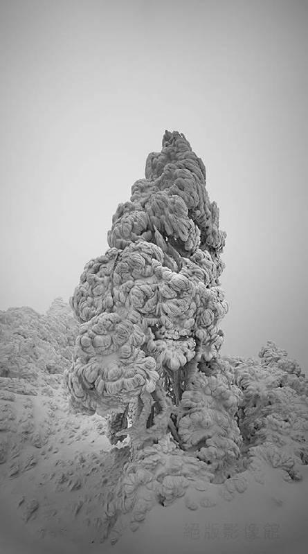陳志宏,《高山雪景-5》,2011。