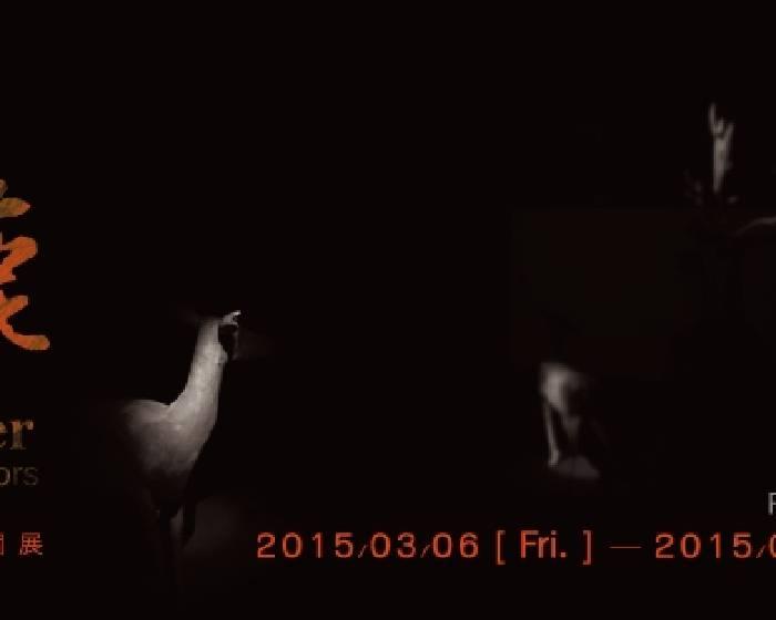 關渡美術館【九色鹿】邱承宏個展
