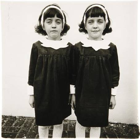 Identical Twins, 1967。圖/取自Wikipedia。