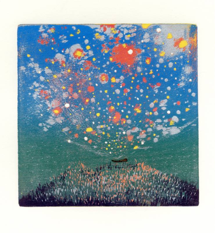 游雅蘭,《你的身體化成星幻宇宙》,2014。