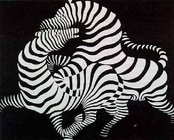 Victor Vasarely,《Zebra》,1937。圖/取自wikiart。