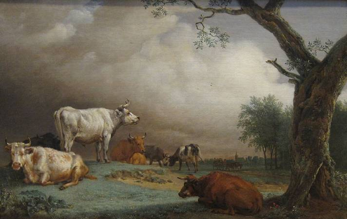 包路斯•波特《Cattle in a Meadow》。圖/取自Wikipedia。