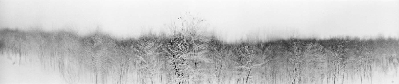 羅永進,《倦鸟, 黄河 B》,2009。