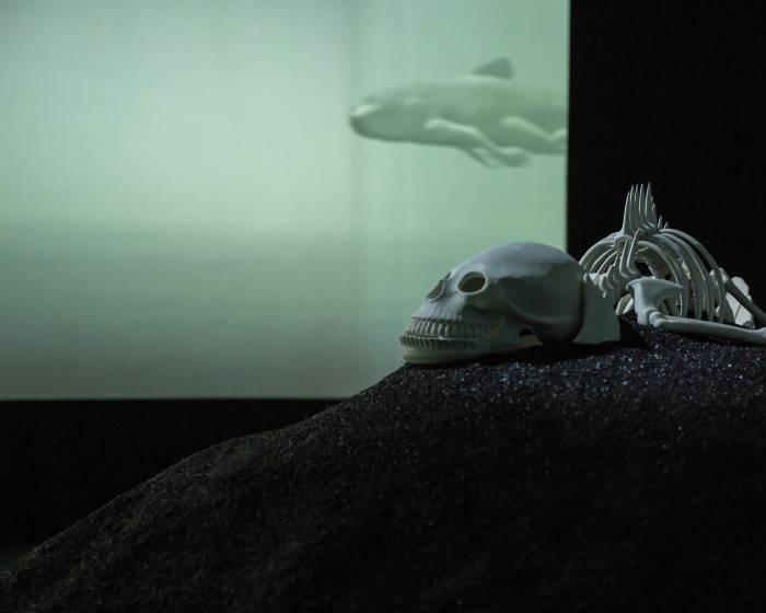 國立臺灣美術館:【李小鏡:N。E。X。T】李小鏡個展