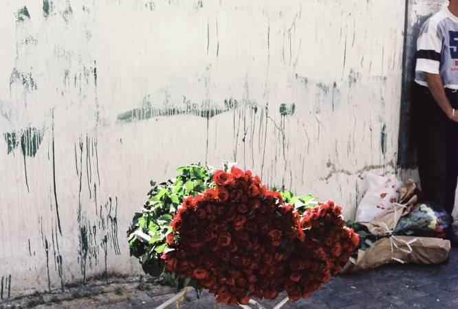 帕歐拉.雅各,《大馬士革之花》,2002。圖/臺北市立美術館提供。