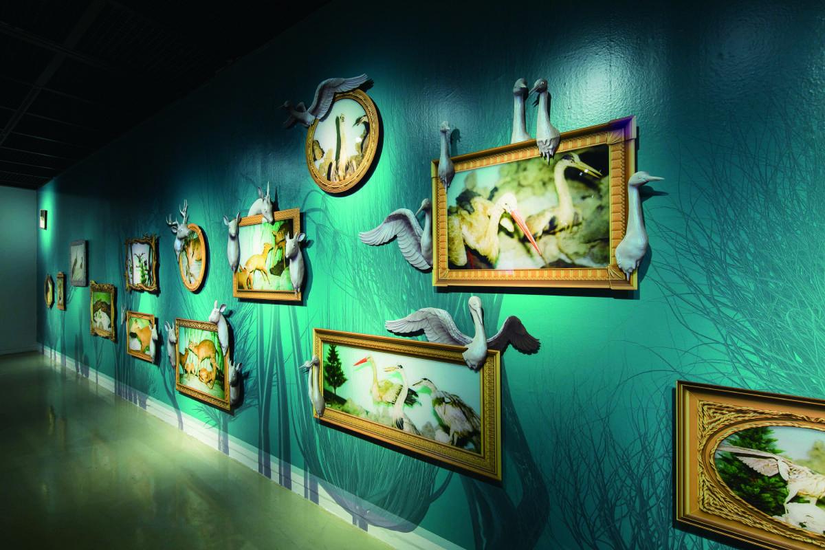 吳權倫 標本博物館