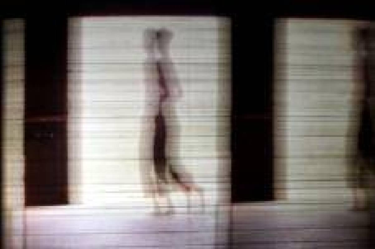 巴勒斯坦裔美籍藝術家尼達.辛諾克羅特(Nida Sinnokrot)裝置影像作品放映《當她舉目眺望》