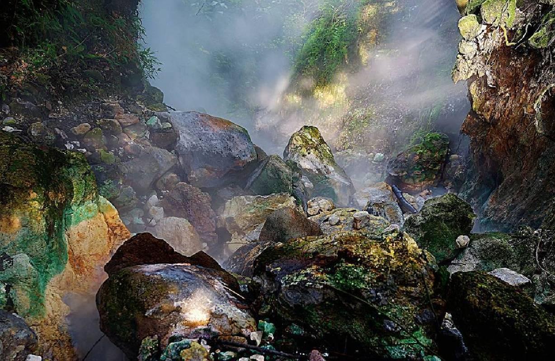 姜禮任攝影-幽谷