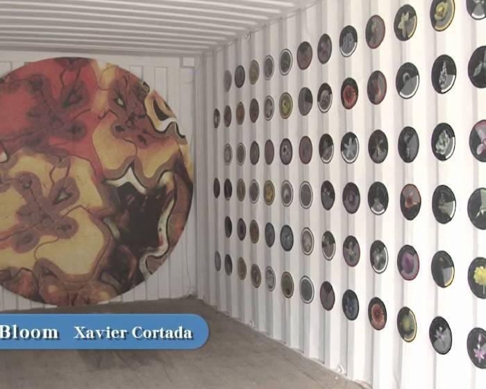 藝文直擊: 2011高雄國際貨櫃藝術節