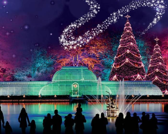 夜遊植物園、摺紙聖誕樹... 11種玩法點亮聖誕節