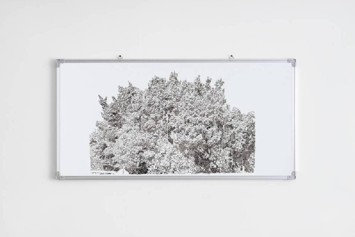 彭奕軒|白板寫生9