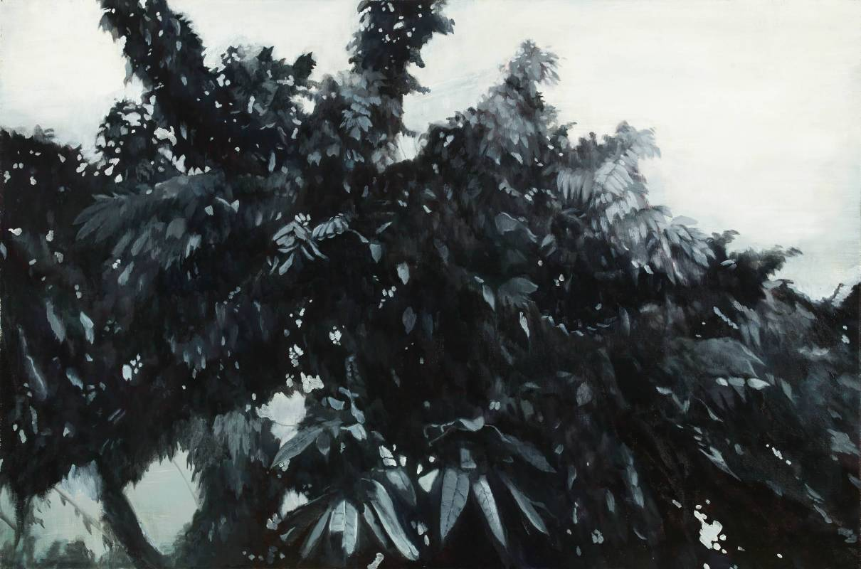 許聖泓<樹 The Tree>