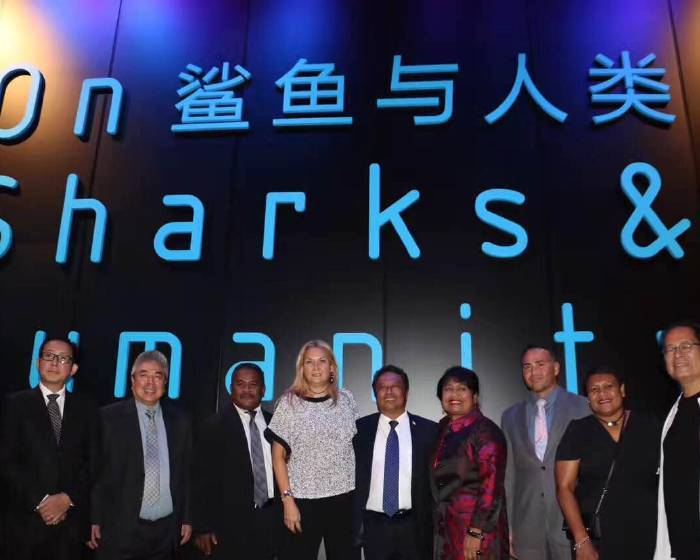 僑福芳草地畫廊【鯊魚與人類 On Sharks & Humanity】僑福當代美術館 新加坡
