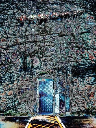 林雪卿ShueKing_Lin-榮與枯之枯 The Vicissitude of Life -Wither_88 × 62 cm_彩色 PS 平版Color PSLithography_2014年