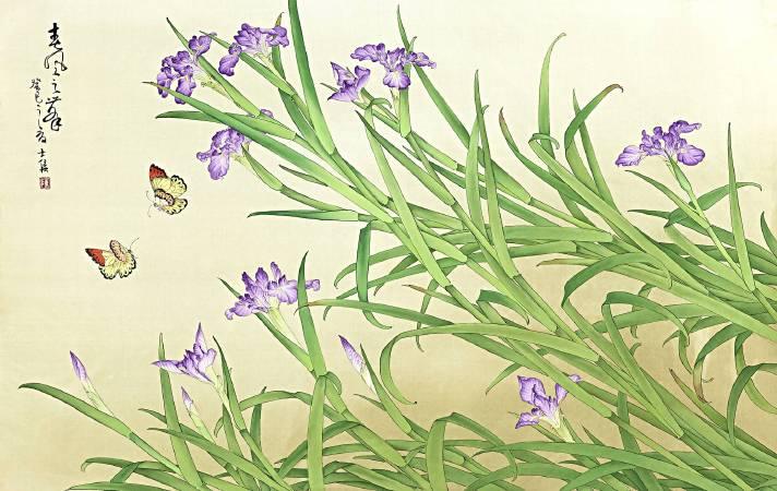 陳士侯 《鳶尾,淡雅若蝶(彩紅女神愛麗絲)》 2013  120×60 cm