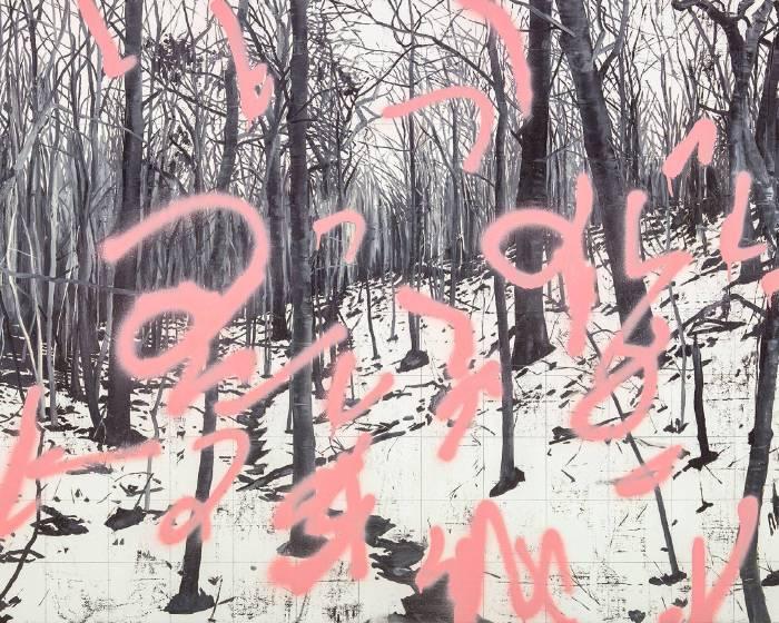 【森林,詩意迴盪之所在 — 也是寫給許常郁的一封短信】