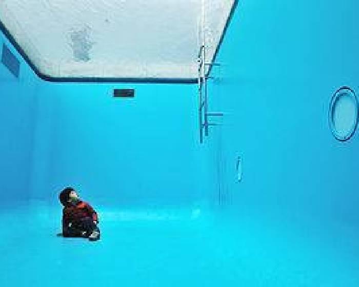 呼朋引伴  在藝術的泳池遨遊