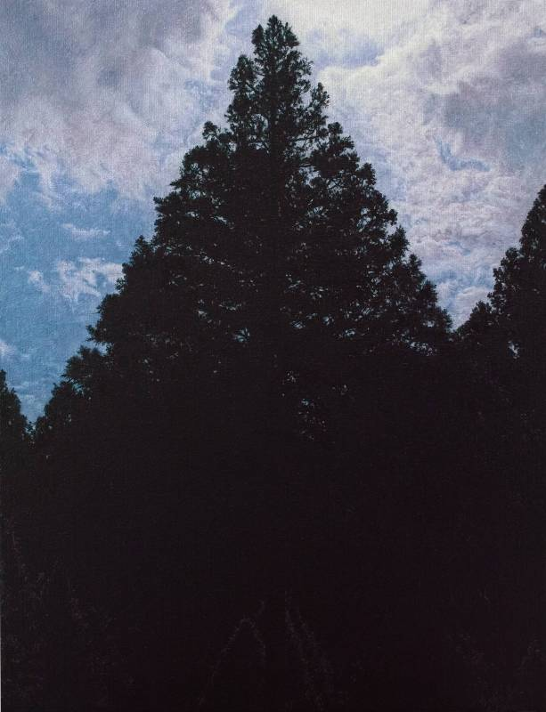 廖震平Liao Zen-Ping, 三角形的樹 triangle trees, 油彩、麻布oil on linen, 53x41cm, 2017