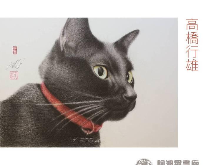 阿波羅畫廊【《霧一般的腳步》高橋行雄 ─ 貓系列個展】