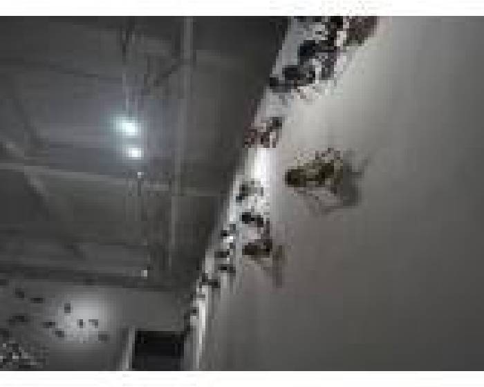 采泥藝術:【魔幻的詭異——關於陳志光的雕塑裝置】
