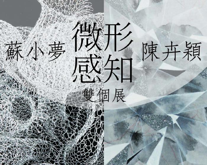 WINWIN ART 未藝術【《微形感知》|蘇小夢 陳卉穎雙個展】展覽時間|2018.01.20 ~ 2018.03.04