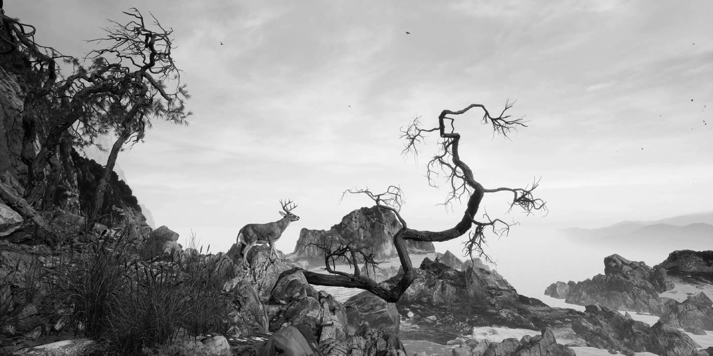 《不朽之境》Eternal Landscape,虛擬實境頭戴裝置、手持控制器、電腦、虛擬實境影像 VR-Headsets, Hand held device, computer, VR interactive imagery,6分33秒 6_33_,2017
