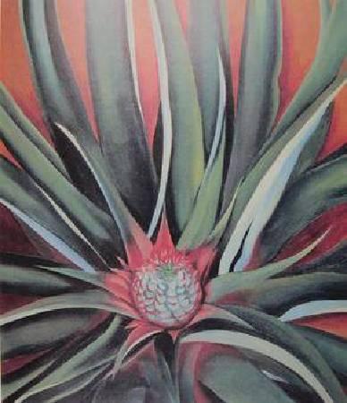 歐姬芙《鳳梨芽》。圖/取自Wikipedia。